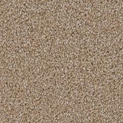 Dream Weaver - Broadcast - Sawgrass Carpet