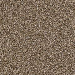 Dream Weaver - Broadcast - Chestnut Carpet