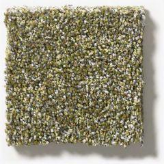Shaw - Points of Color II - Chameleon Carpet
