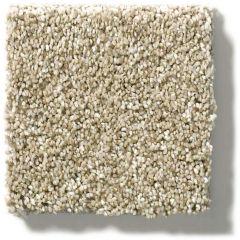 Shaw - Points of Color II - Khaki Carpet