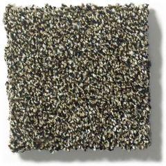 Shaw - Points of Color II - Bark Carpet