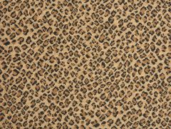 Stanton - Felix - Bronze Carpet