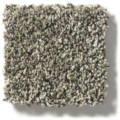 Shaw - Perpetual - Portobello Carpet