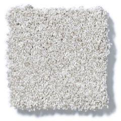 Shaw - Take The Floor Tonal I - Classique Carpet