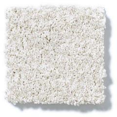 Shaw - Take The Floor Tonal I - Orion Carpet