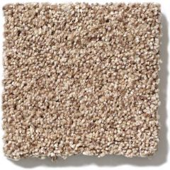 Shaw - Take The Floor Tonal I - Sienna Carpet