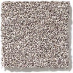 Shaw - Take The Floor Tonal I - Tundra Carpet
